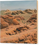 Vast Desert Valley Of Fire Wood Print