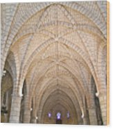 Vaulted Ceiling And Arches Wood Print