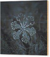 Vega, Panoramic Version Wood Print