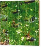 Vegetables Plant For Urban Life 2 Wood Print