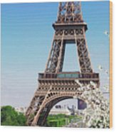 Eiffel Tower And Spring Wood Print