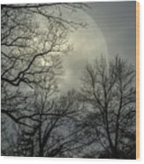 Veil Of Lunacy  Wood Print