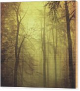 Veiled Trees Wood Print
