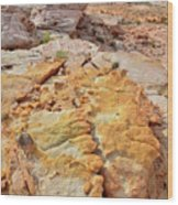Vein Of Gold In Valley Of Fire State Park Wood Print