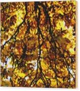 Veins Of Life  Wood Print