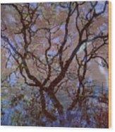 Veins Of Llife Wood Print