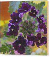 Velvet Petals Wood Print