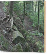Velvet Rock Wood Print
