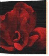Velvet Rose Wood Print