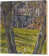 Ven Z Parku Wood Print