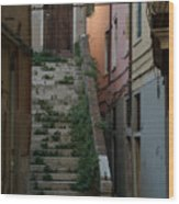 Venice Alleyway Wood Print