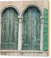 Venice Window Flower Pot Wood Print