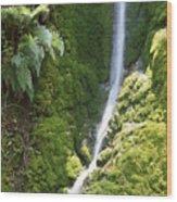 Ventana Wilderness Wood Print