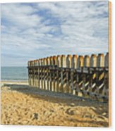 Ventnor Beach Groyne Wood Print