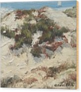 Ventura Dunes I Wood Print