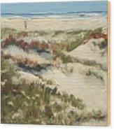 Ventura Dunes II Wood Print