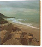 Ventura Wood Print