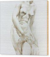 Venus 1a Wood Print