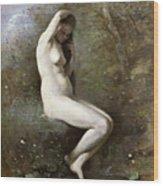 Venus Bathing Wood Print