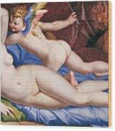 Venus, Cupid And A Satyr Wood Print
