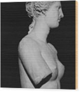 Venus De Milo Wood Print by Greek School