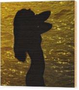 Venus Del Mare Wood Print