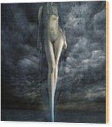 Venus Noir Wood Print