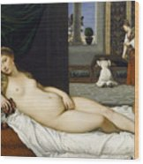 Venus Of Urbino Before 1538 Wood Print