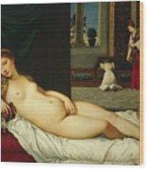 Venus Of Urbino  Wood Print