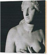 Venus Pudica  Wood Print