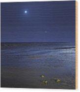 Venus Shines Brightly Wood Print