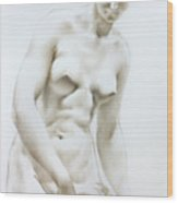 Venus1b Wood Print by Valeriy Mavlo
