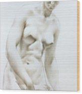 Venus1b Wood Print