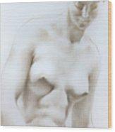Venus1c Wood Print