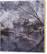 Verde Spring Reflections Wood Print