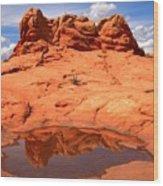 Vermilion Cliffs Reflections Wood Print