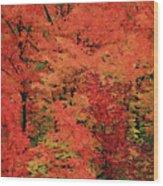 Vermont Autumn Wood Print