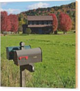 Vermont Farm In Autumn Wood Print