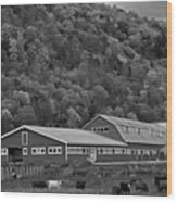 Vermont Farm With Cows Autumn Fall Black And White Wood Print