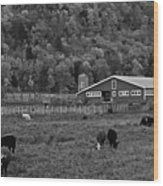 Vermont Farm With Cows Black And White Wood Print