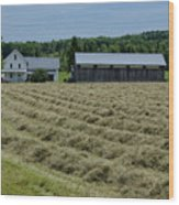 Vermont Farmhouse With Hay Wood Print
