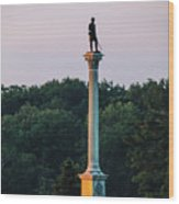 Vermont Monument Wood Print