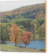 Vermont Pond Wood Print by Lyn Vic