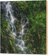 Vernal Fall At Rincon De La Veija Wood Print