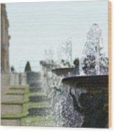 Versailles Fountains Wood Print
