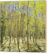 Vertical Aspen Forest Wood Print