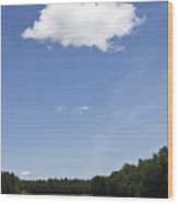 Vertical Landscape Wood Print