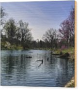 Vertical Pond Wood Print