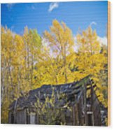 Vertical Shot Of Meagher's Cabin Wood Print