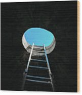 Vertical Step-ladder On Ceiling Window  Wood Print